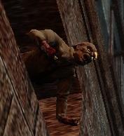 Zvracející zombie